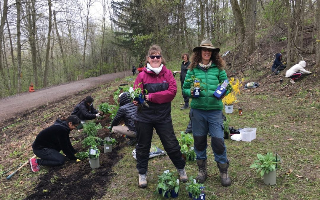 TD Friends of the Environment Grant